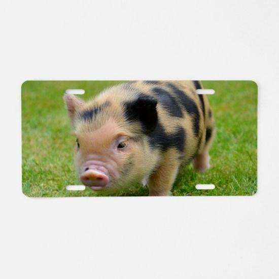 Little Spotty micro pig Aluminum License Plate