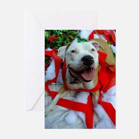 Christmas Bully Greeting Cards