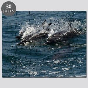 Dolphins at Play Puzzle