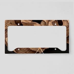Copperhead Snake License Plate Holder