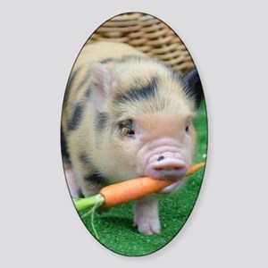 Micro pig with carrot Sticker (Oval)