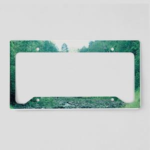 """Hawaiian  Waterfall"" License Plate Holder"