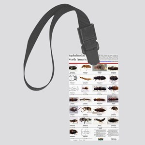 Staphylinidae Poster Large Luggage Tag
