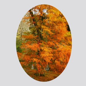 Willow in Autumn colors Oval Ornament