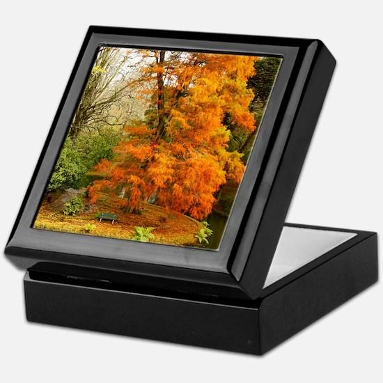 Willow in Autumn colors Keepsake Box