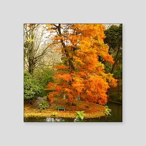 "Willow in Autumn colors Square Sticker 3"" x 3"""