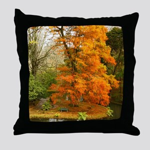 Willow in Autumn colors Throw Pillow