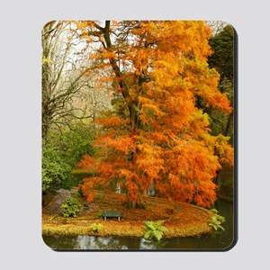 Willow in Autumn colors Mousepad