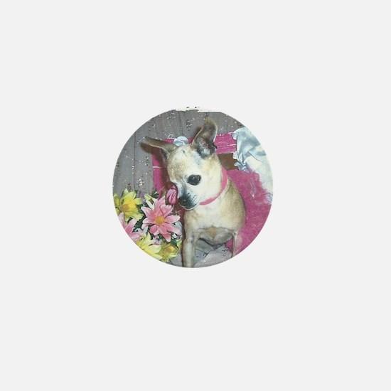 Pretty in Pink Rescue chihuahua Mini Button