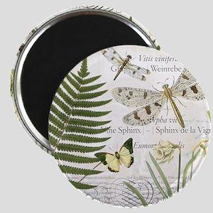 Vintage French dragonflies Magnet