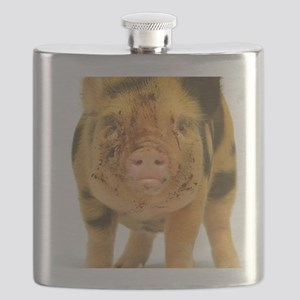 Micro pig looking messy Flask
