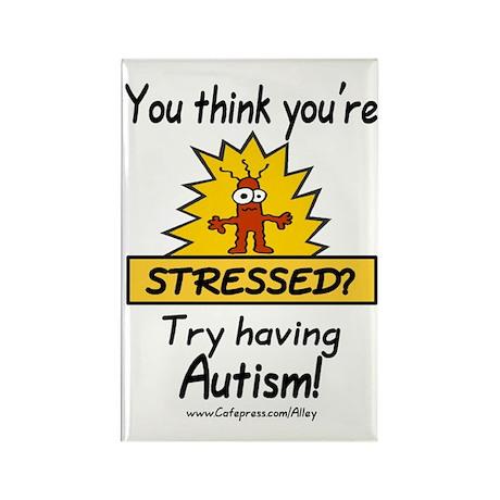 Autism Stress Rectangle Magnet