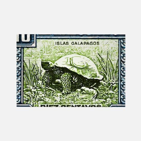 1936 Ecuador Galapagos Tortoise P Rectangle Magnet