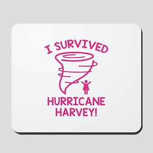 Hurricane Harvey Survivor Mousepad