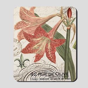 modern vintage winter garden amaryllis Mousepad