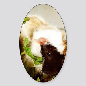 Guinea Pig in the FLowers Sticker (Oval)
