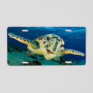 Sea Turtle Soar Aluminum License Plate