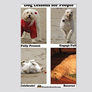 Dog Lessons for People Postcards (Package of 8)