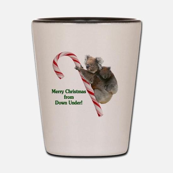 Koalas Merry Christmas from Down Under  Shot Glass