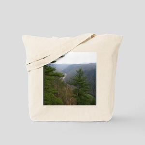 PA Grand Canyon Tote Bag