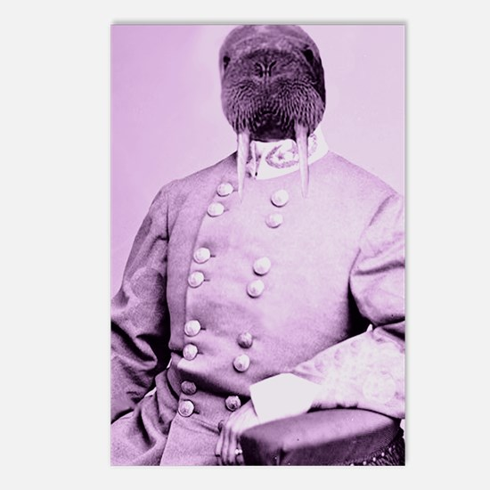 Walrus soldier Postcards (Package of 8)