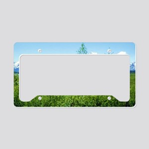 Spring Tetons License Plate Holder