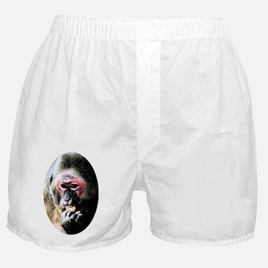 Ms Riley Boxer Shorts