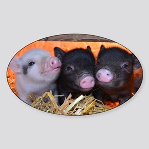 THREE LITTLE PIGS Sticker (Oval)