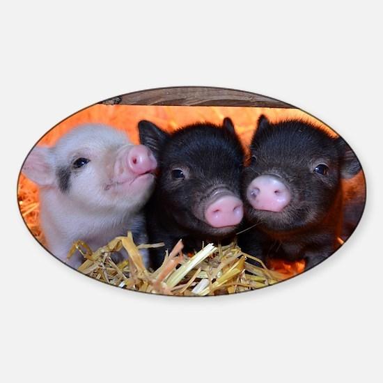 THREE LITTLE PIGS Sticker (Oval)