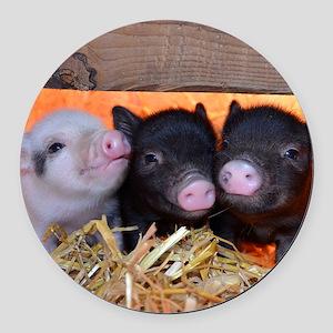 Three Little Piggies Round Car Magnet