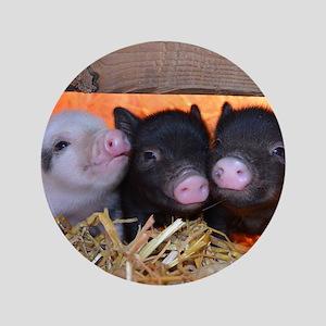 "Three Little Piggies 3.5"" Button"