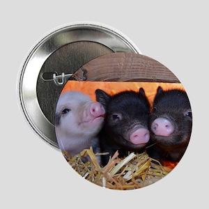 "Three Little Piggies 2.25"" Button"