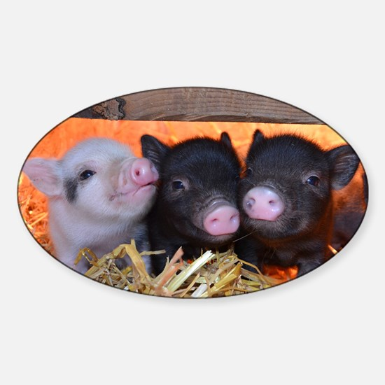 Three Little Piggies Sticker (Oval)