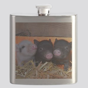 Three Little Piggies Flask