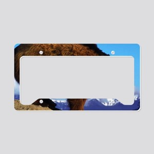 A Grizzly View License Plate Holder