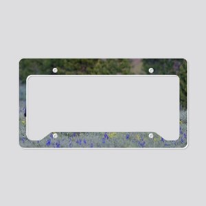 Grizzly Bear# 399  Triplets License Plate Holder