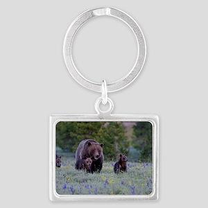 Grizzly Bear# 399  Triplets Landscape Keychain