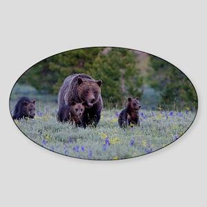 Grizzly Bear# 399  Triplets Sticker (Oval)