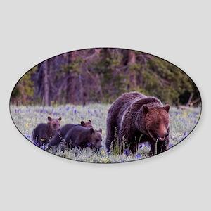Grizzly Bear 399 Sticker (Oval)