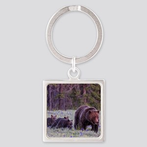 Grizzly Bear 399 Square Keychain