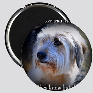 Dogs are better... Magnet