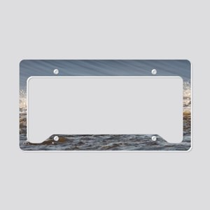 Pelican 11x17 License Plate Holder