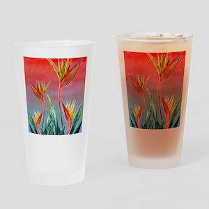 Bird of Paradise Drinking Glass