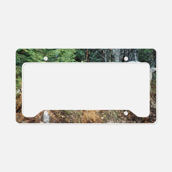 """Come  on!,  We  Are  Almost  License Plate Holder"