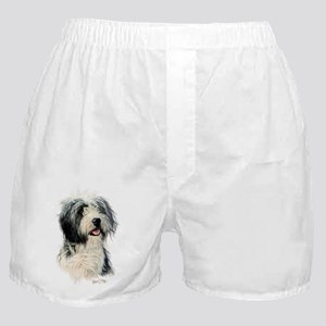 Bearded Collie 1 Boxer Shorts