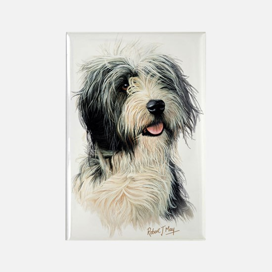 Bearded Collie 1 Rectangle Magnet