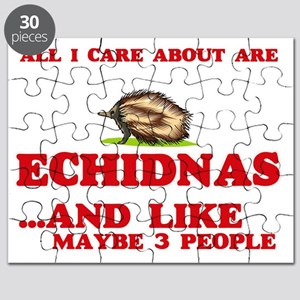 All I care about are Echidnas Puzzle