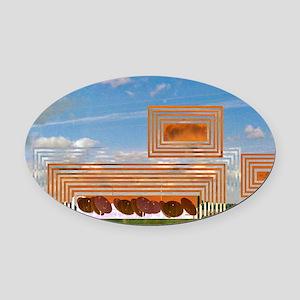 World Aware Oval Car Magnet