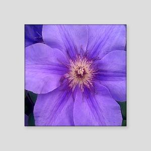 "Purple Clematis Square Sticker 3"" x 3"""