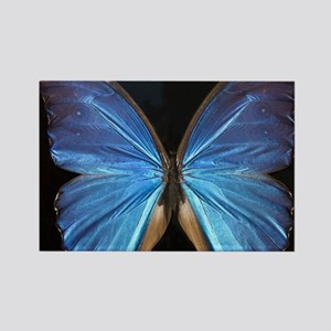 Elegant Blue Butterfly Rectangle Magnet